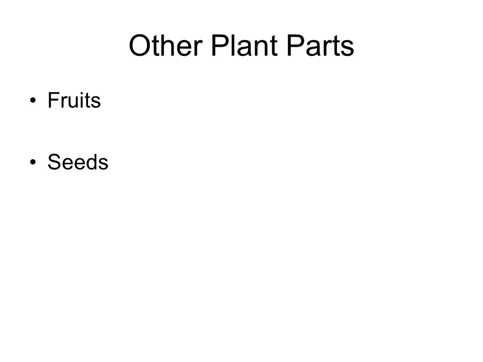 Other Plant Parts Fruits Seeds
