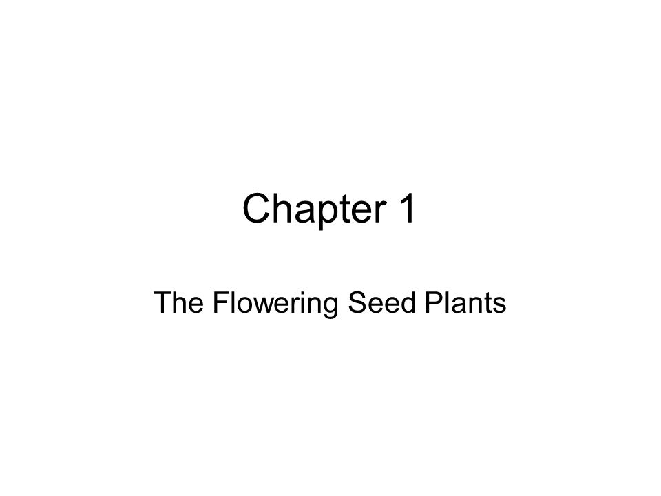 The Flowering Seed Plants