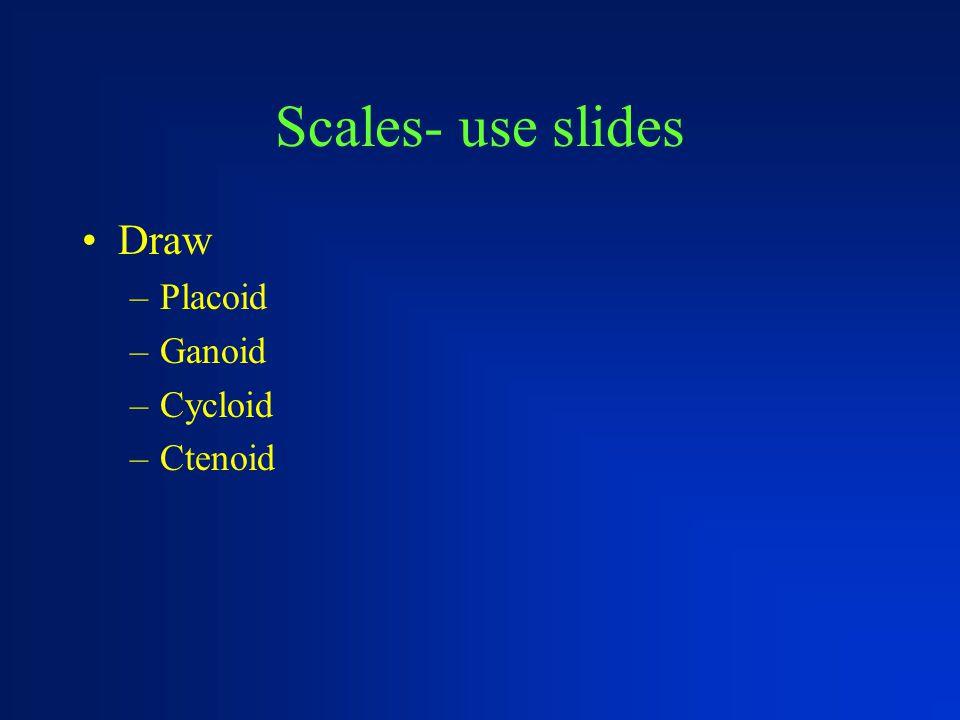 Scales- use slides Draw Placoid Ganoid Cycloid Ctenoid