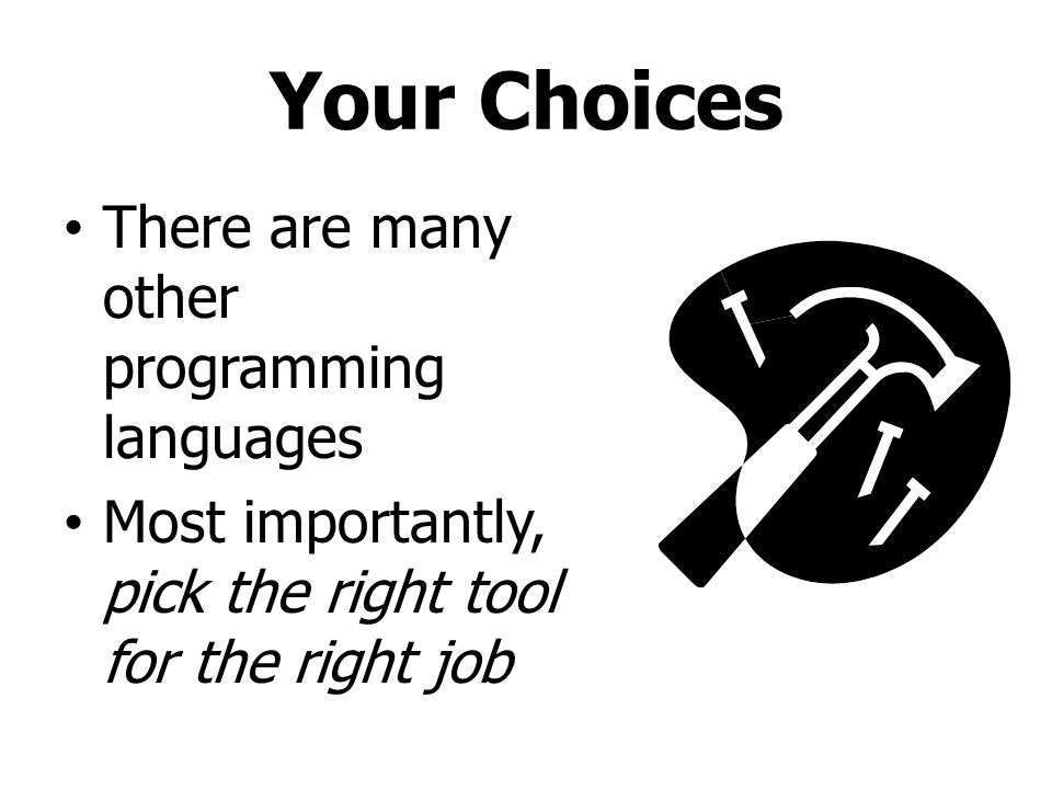 Your Choices There are many other programming languages