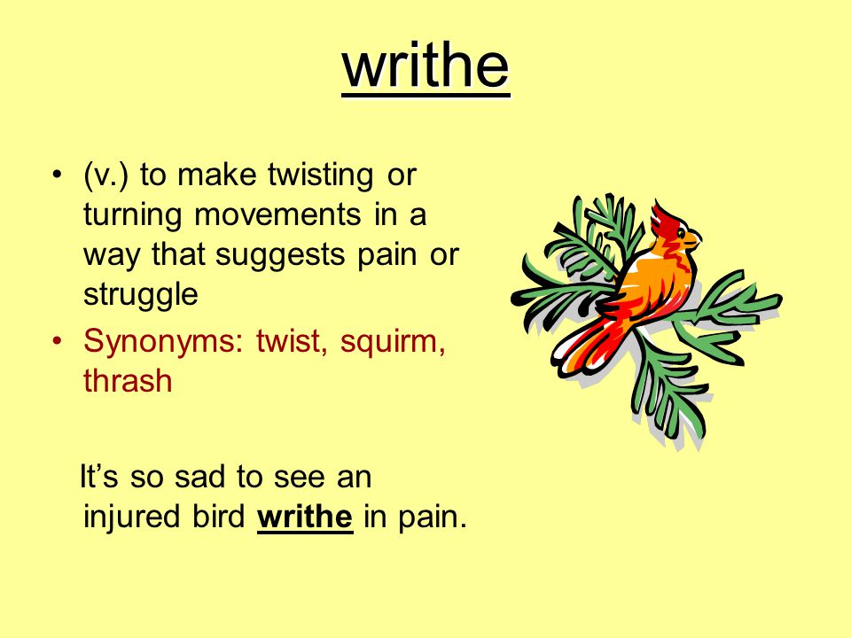 writhe (v.) to make twisting or turning movements in a way that suggests pain or struggle. Synonyms: twist, squirm, thrash.