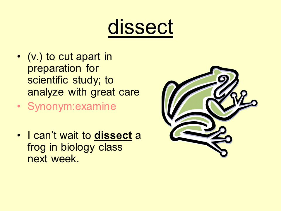 dissect (v.) to cut apart in preparation for scientific study; to analyze with great care. Synonym:examine.
