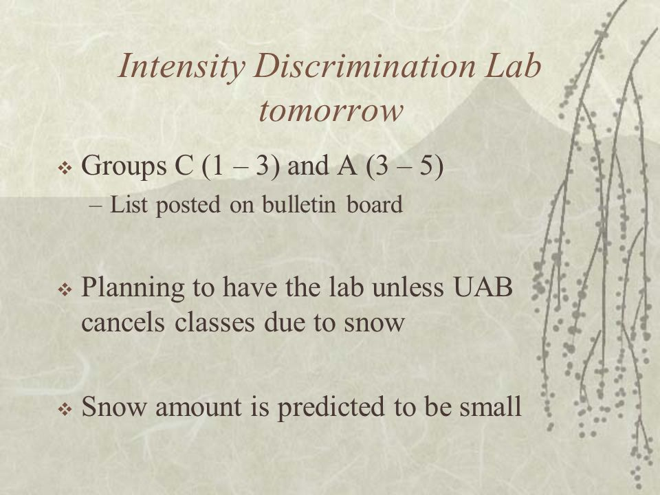 Intensity Discrimination Lab tomorrow