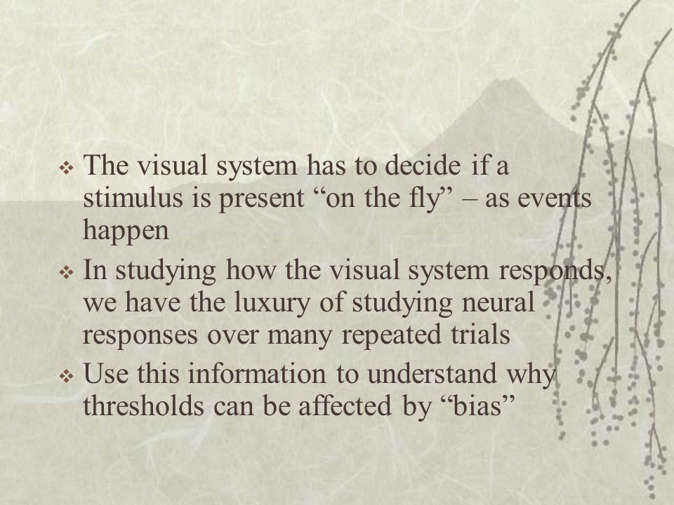 The visual system has to decide if a stimulus is present on the fly – as events happen