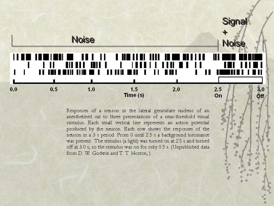 Signal + Noise Noise