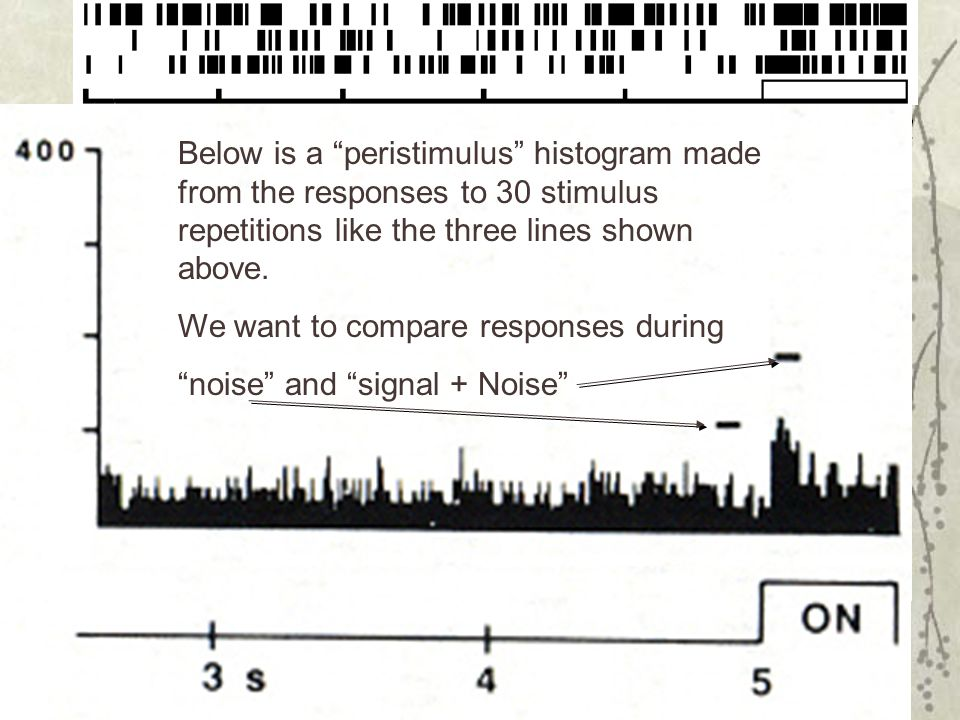 Below is a peristimulus histogram made from the responses to 30 stimulus repetitions like the three lines shown above.