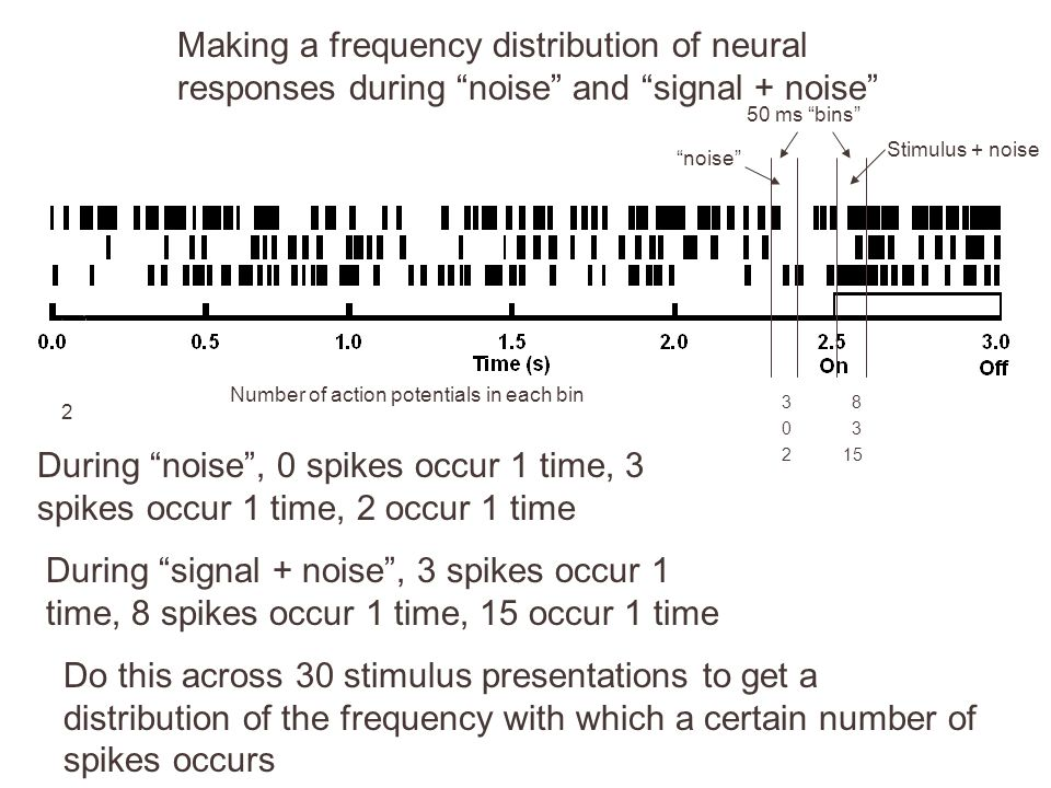 Making a frequency distribution of neural responses during noise and signal + noise