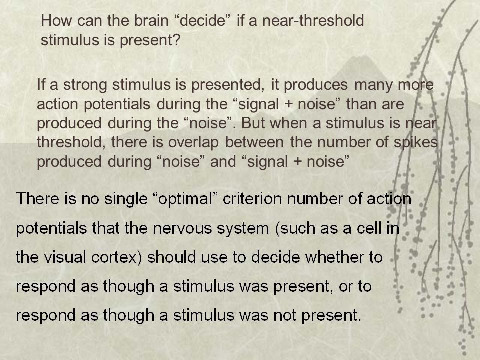 How can the brain decide if a near-threshold stimulus is present