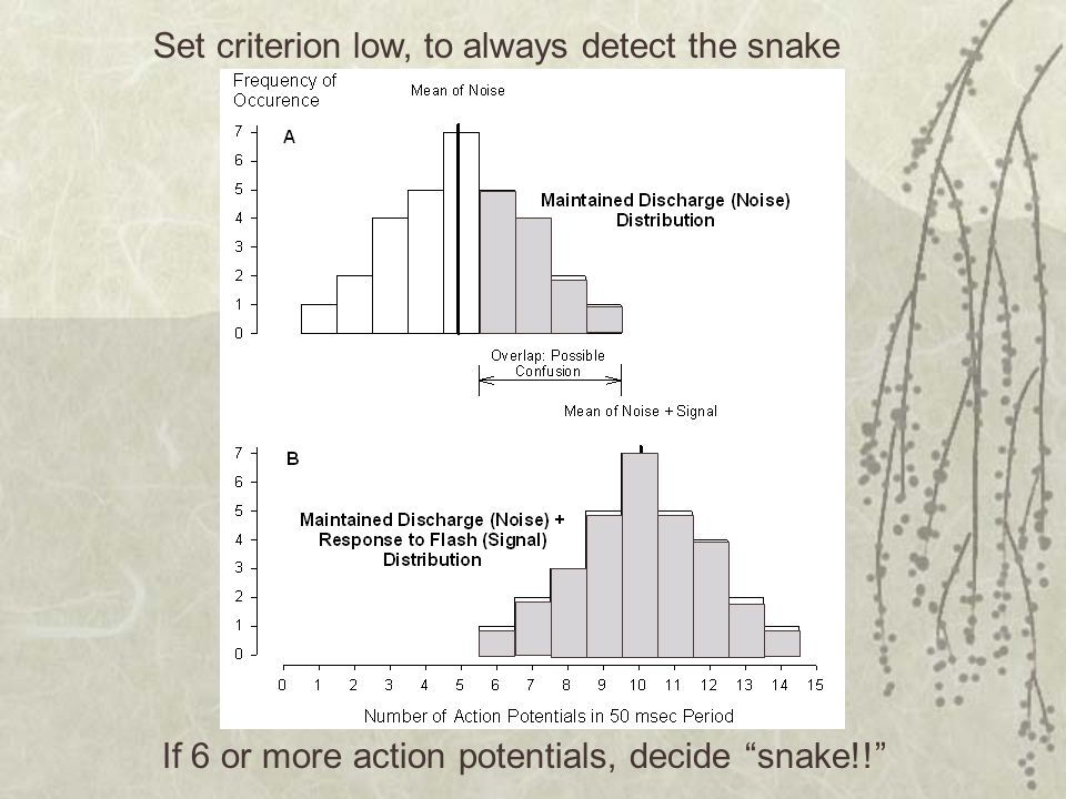 Set criterion low, to always detect the snake
