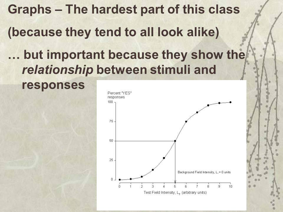 Graphs – The hardest part of this class