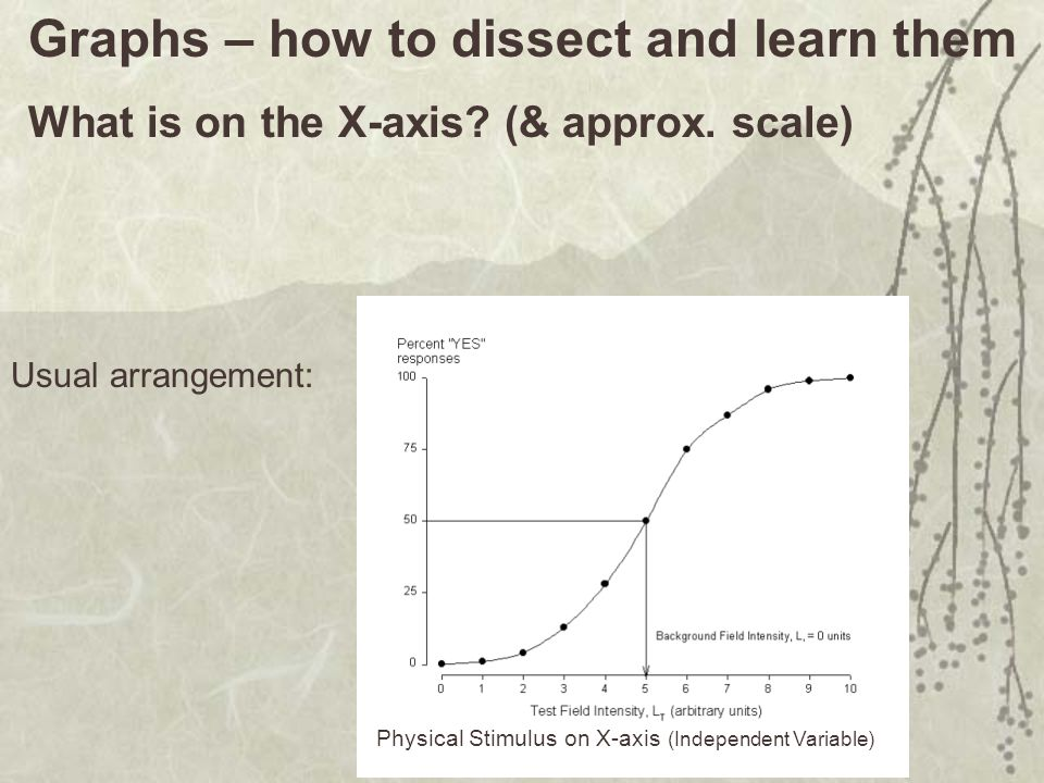 Graphs – how to dissect and learn them