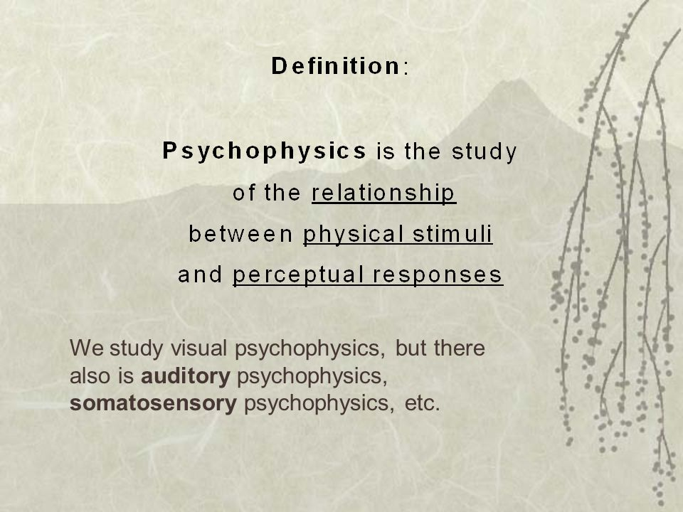 We study visual psychophysics, but there also is auditory psychophysics, somatosensory psychophysics, etc.