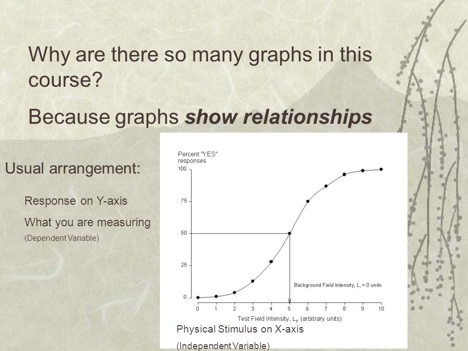Why are there so many graphs in this course