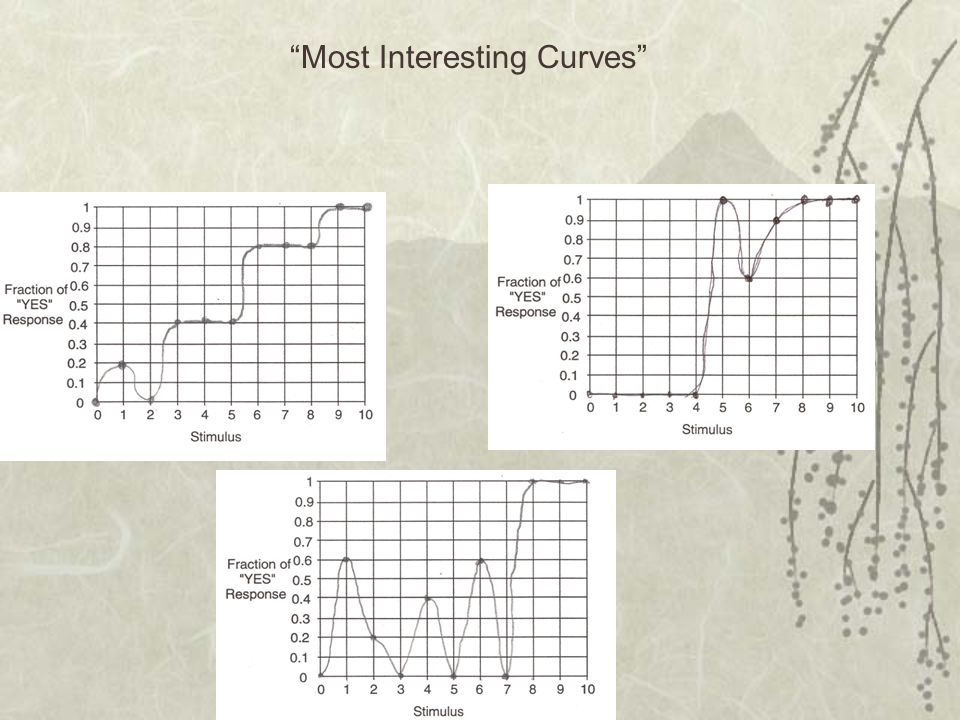Most Interesting Curves