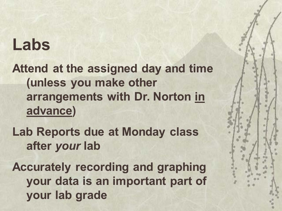 Labs Attend at the assigned day and time (unless you make other arrangements with Dr. Norton in advance)