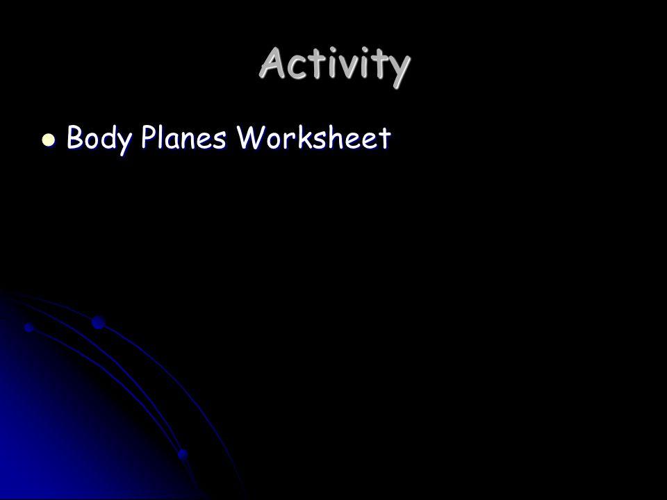 Activity Body Planes Worksheet