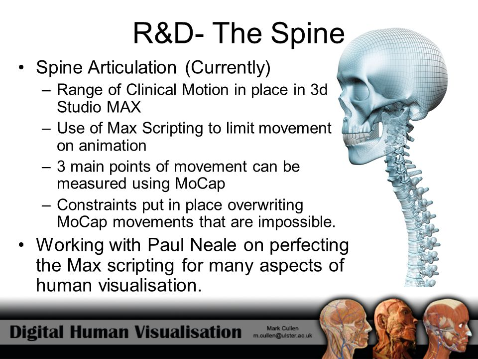 R&D- The Spine Spine Articulation (Currently)
