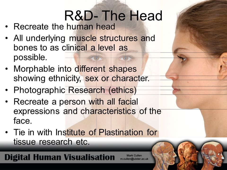 R&D- The Head Recreate the human head