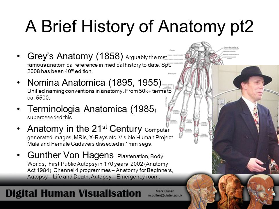 A Brief History of Anatomy pt2