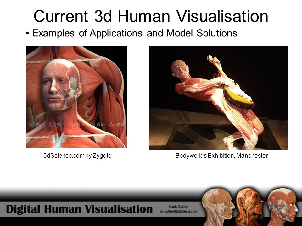 Current 3d Human Visualisation