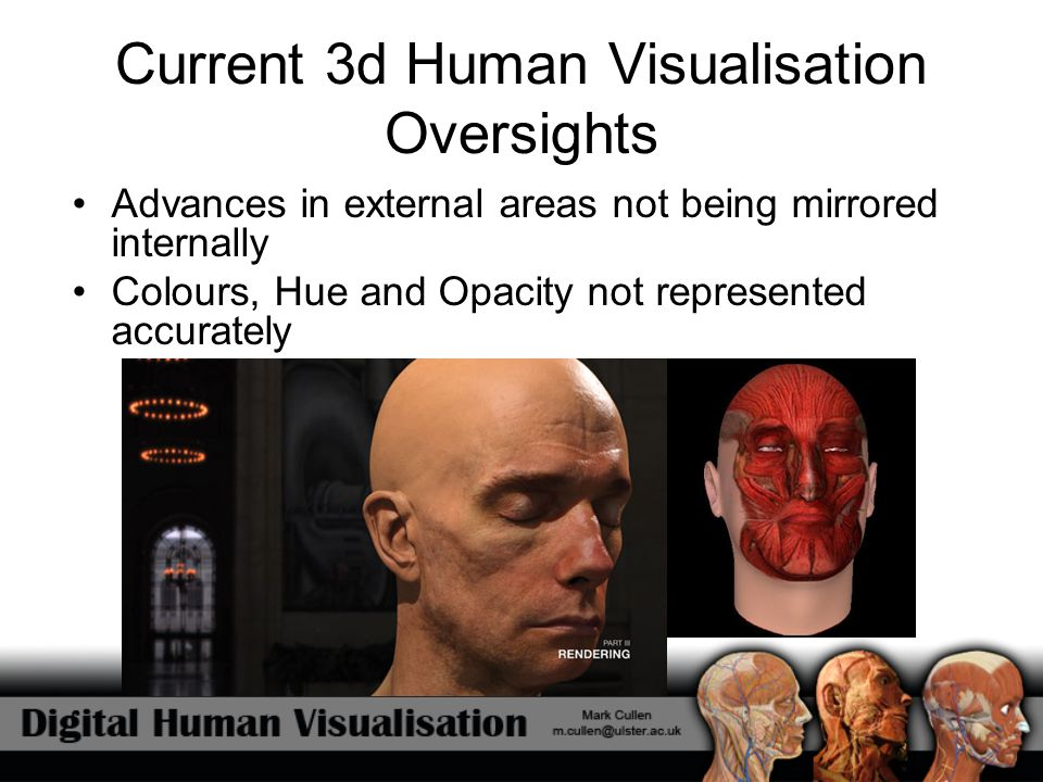 Current 3d Human Visualisation Oversights