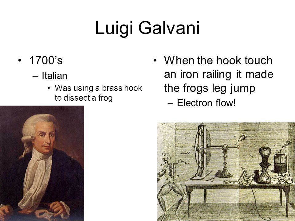 Luigi Galvani 1700's. Italian. Was using a brass hook to dissect a frog. When the hook touch an iron railing it made the frogs leg jump.