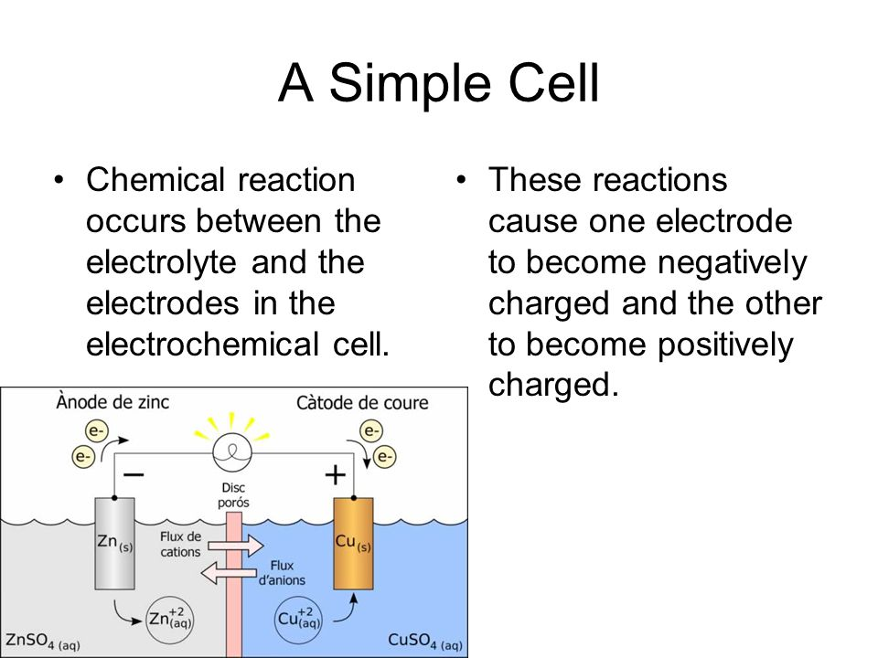 A Simple Cell Chemical reaction occurs between the electrolyte and the electrodes in the electrochemical cell.