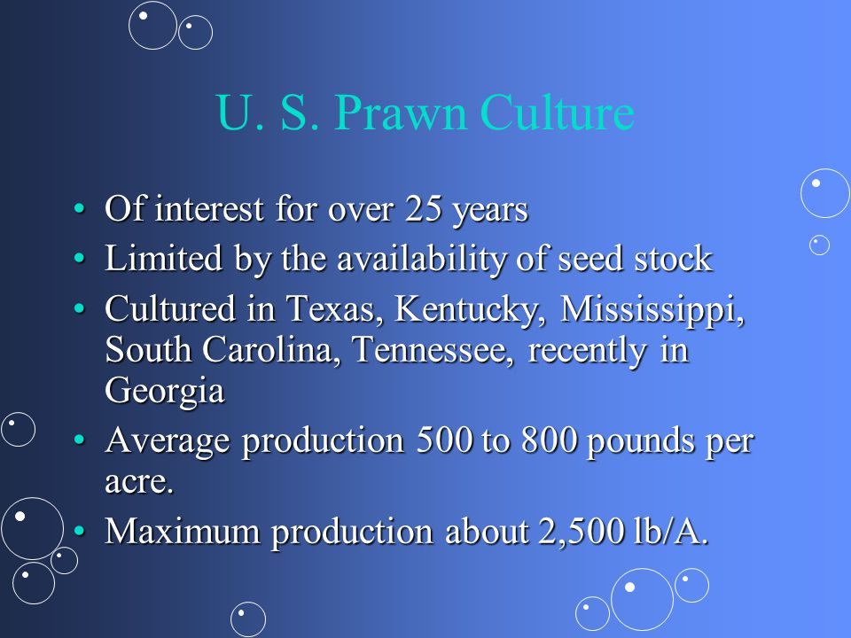 U. S. Prawn Culture Of interest for over 25 years