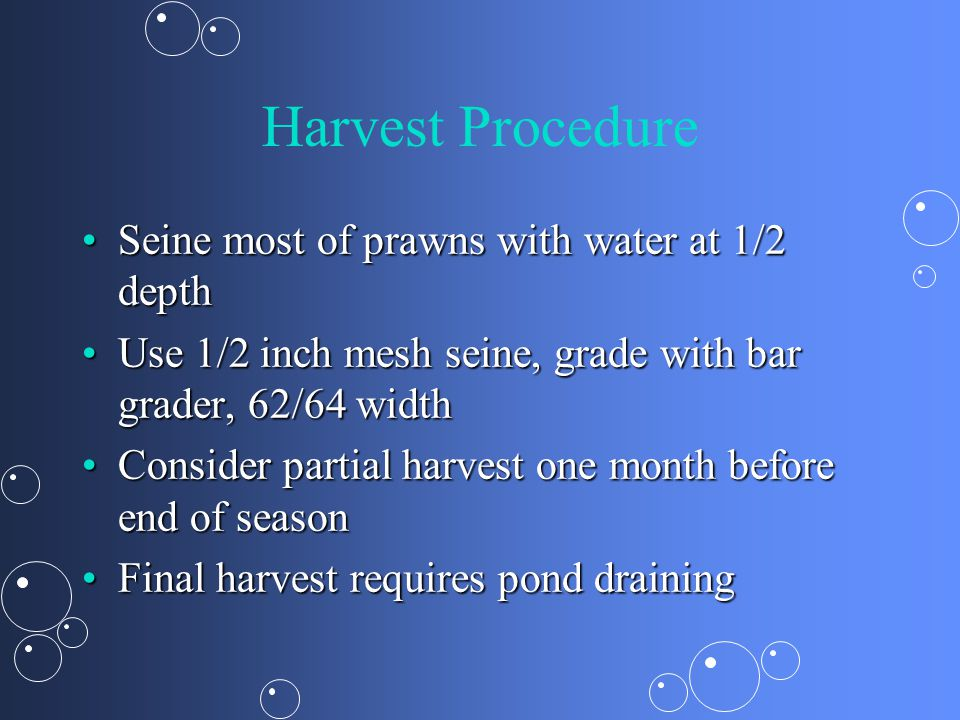 Harvest Procedure Seine most of prawns with water at 1/2 depth
