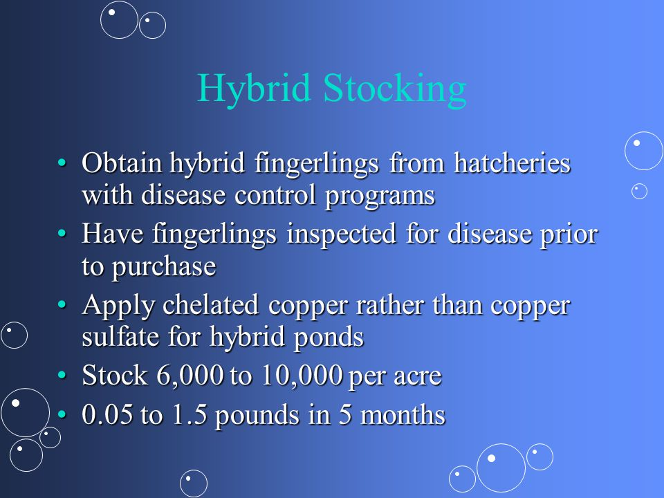 Hybrid Stocking Obtain hybrid fingerlings from hatcheries with disease control programs. Have fingerlings inspected for disease prior to purchase.