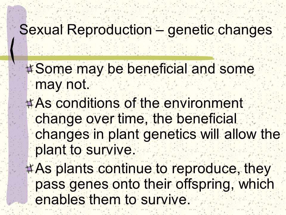 Sexual Reproduction – genetic changes
