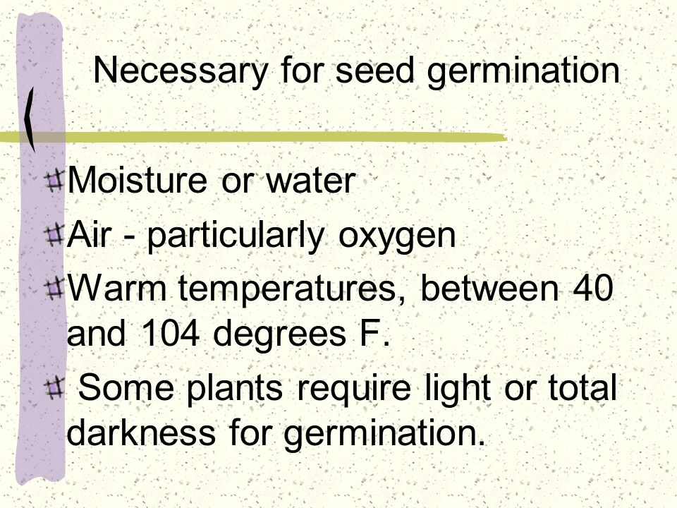 Necessary for seed germination