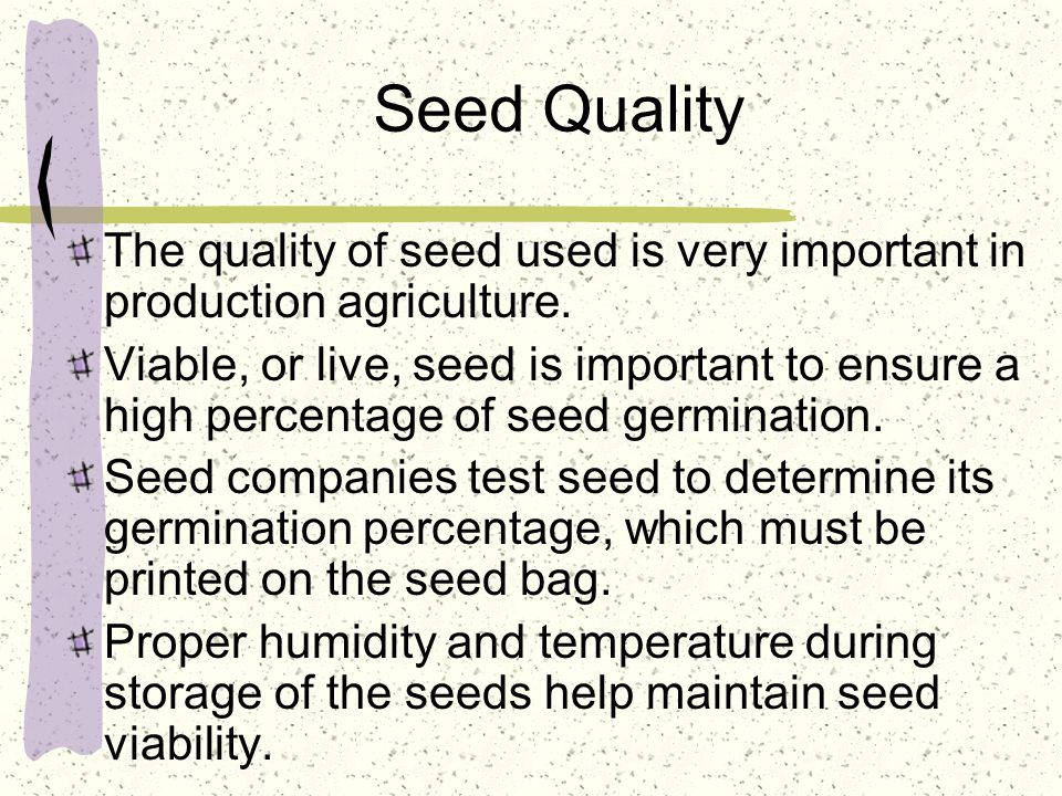 Seed Quality The quality of seed used is very important in production agriculture.