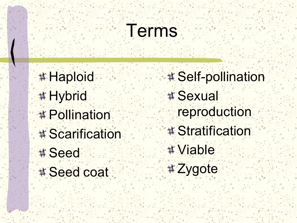 Terms Haploid Hybrid Pollination Scarification Seed Seed coat