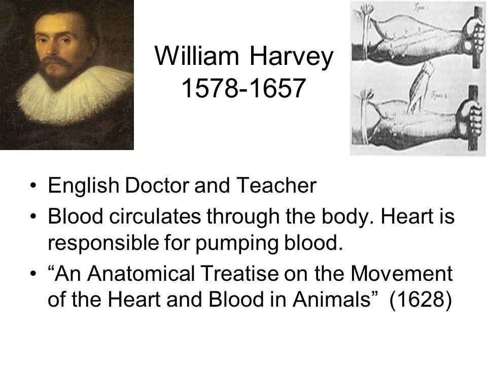 William Harvey 1578-1657 English Doctor and Teacher