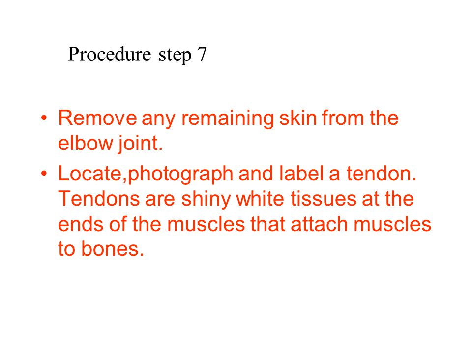 Procedure step 7 Remove any remaining skin from the elbow joint.