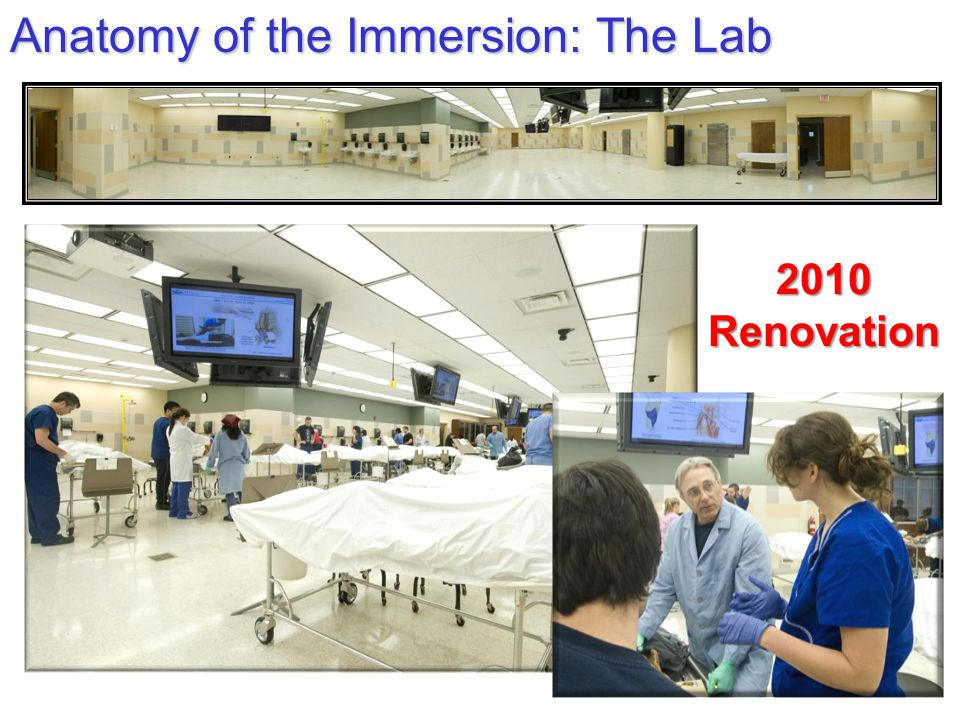 Anatomy of the Immersion: The Lab