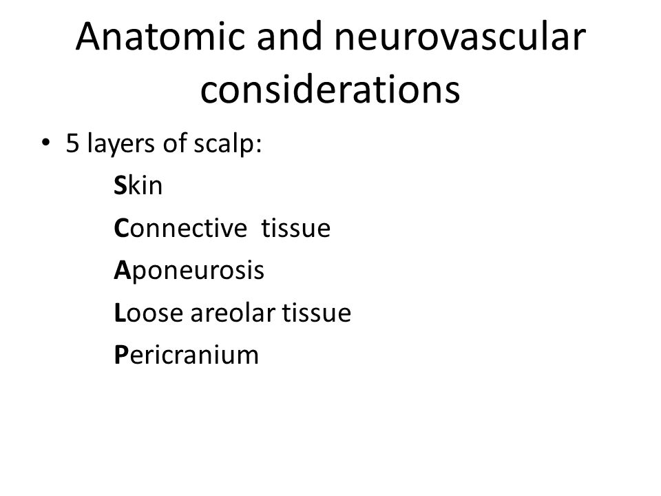 Anatomic and neurovascular considerations