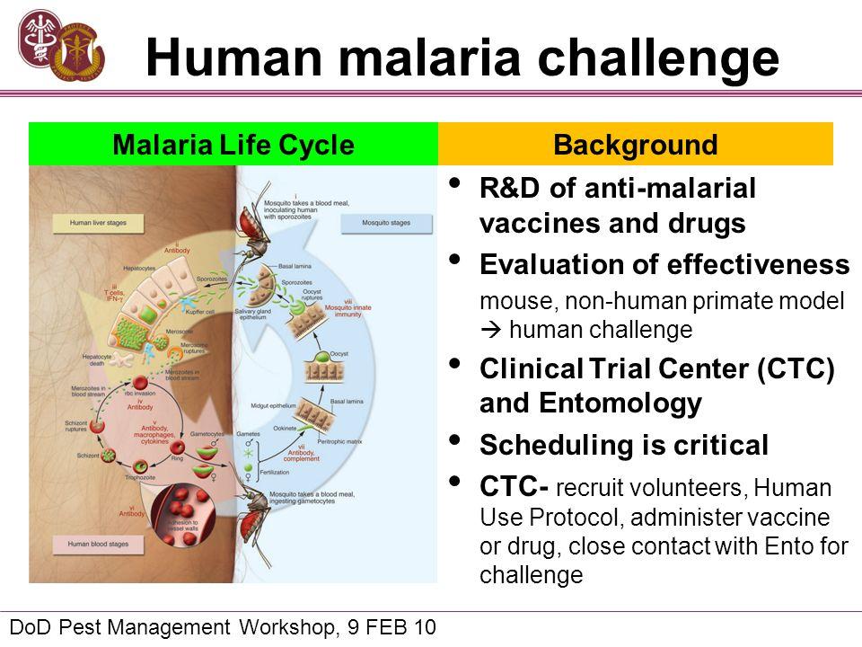 Human malaria challenge