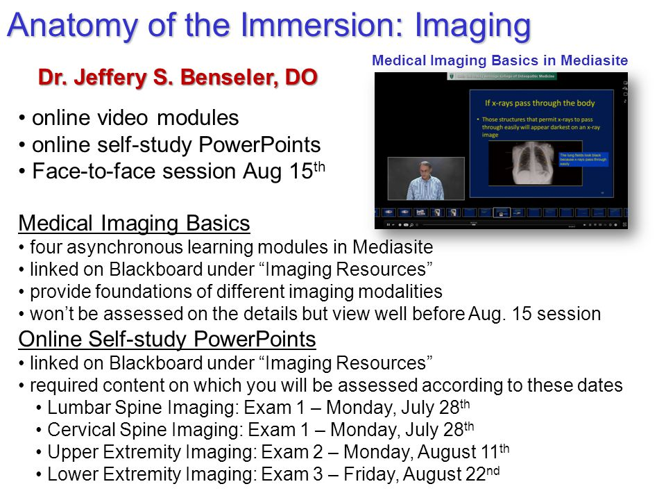 Anatomy of the Immersion: Imaging