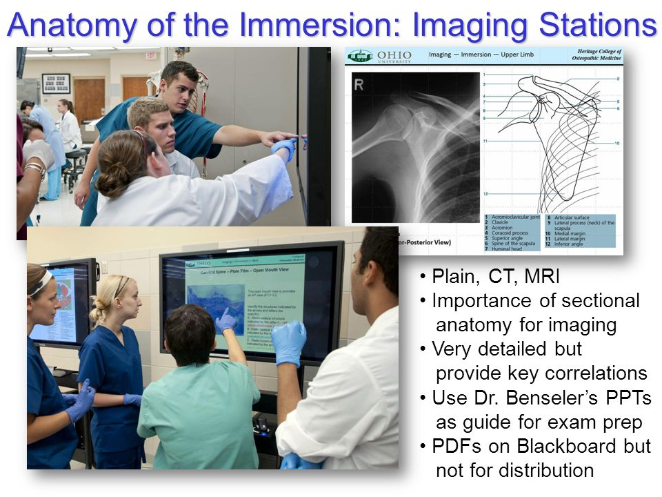Anatomy of the Immersion: Imaging Stations