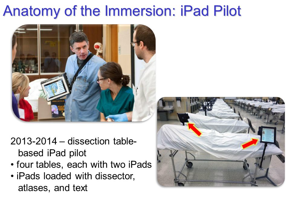 Anatomy of the Immersion: iPad Pilot