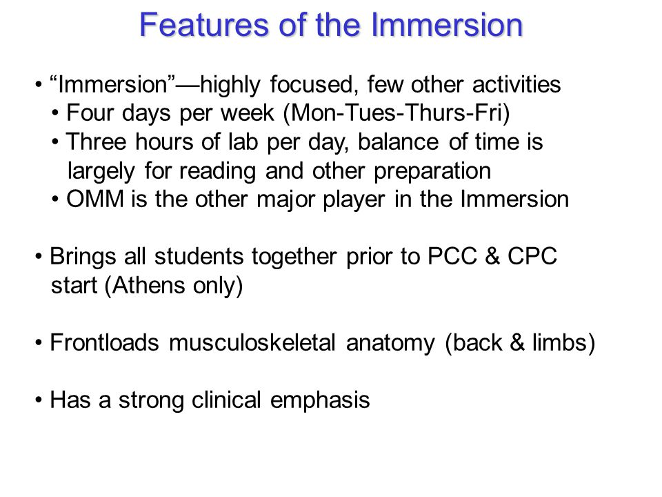 Features of the Immersion
