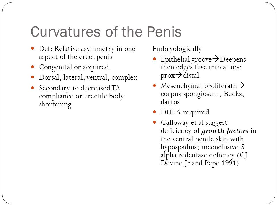 Curvatures of the Penis