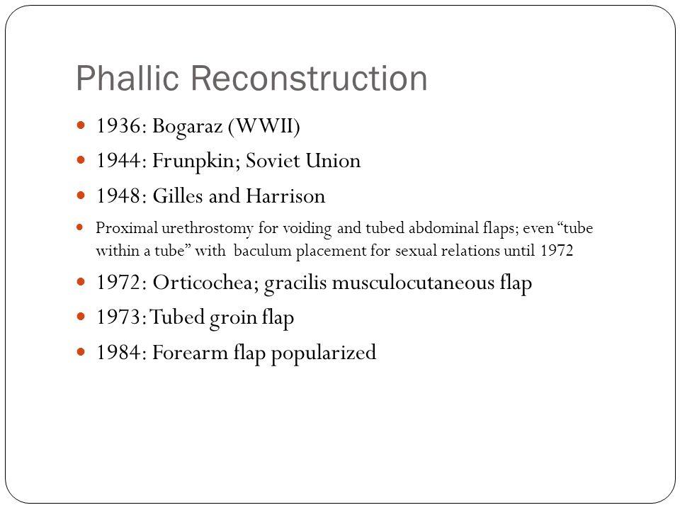 Phallic Reconstruction