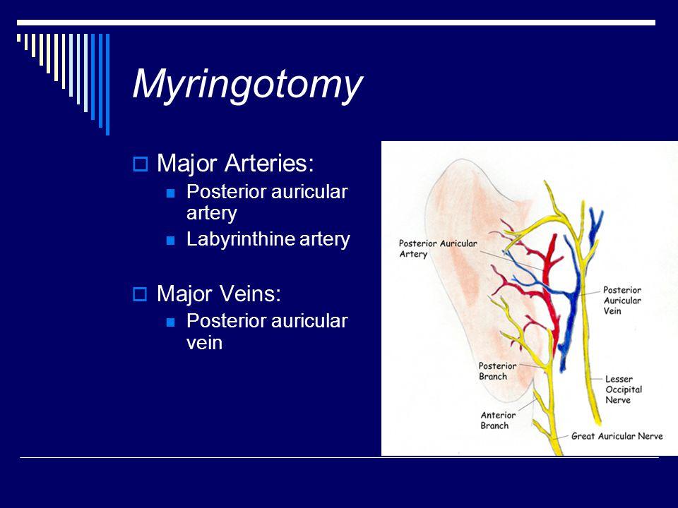 Myringotomy Major Arteries: Major Veins: Posterior auricular artery