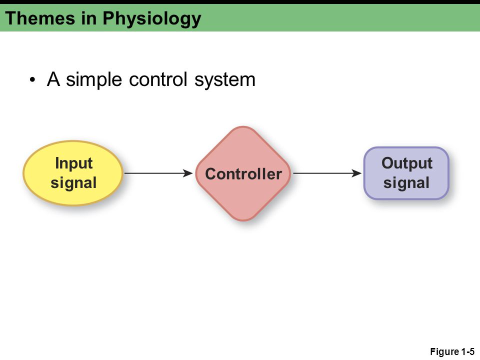 A simple control system