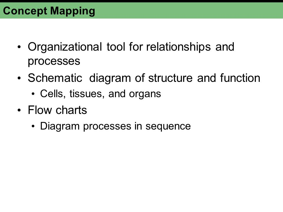 Organizational tool for relationships and processes