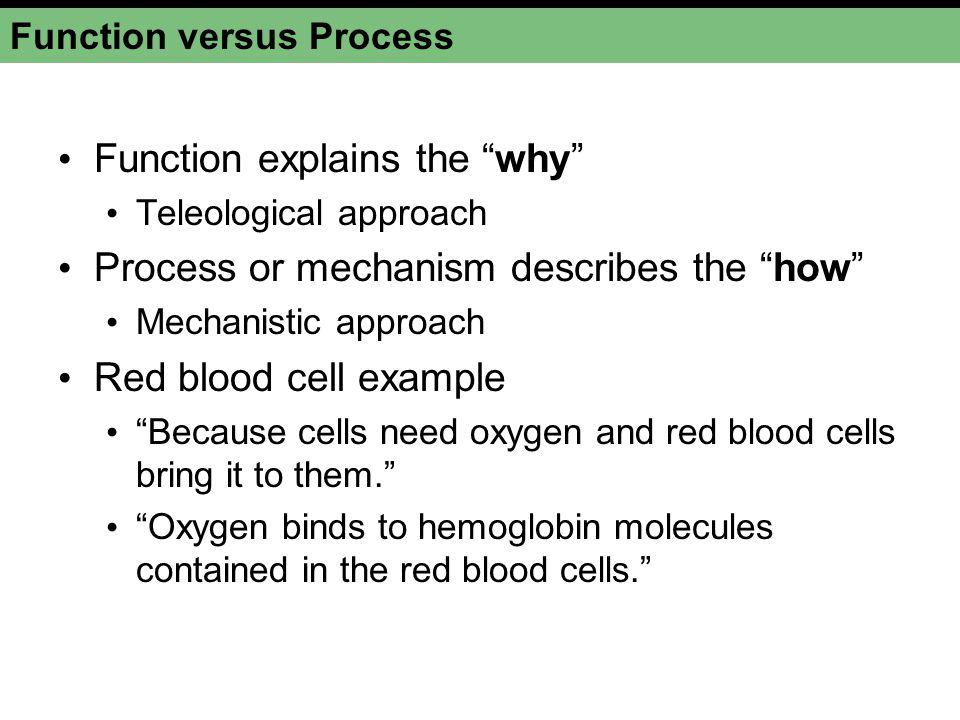 Function versus Process