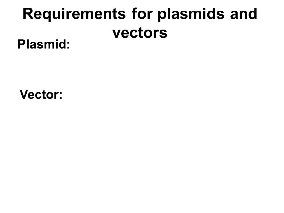 Requirements for plasmids and vectors